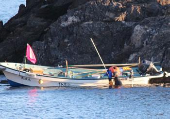 あわび漁をしている漁師さん